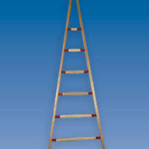 Wooden Window Cleaners A Pointer Ladder