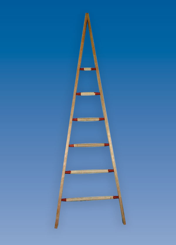 Wooden Window Cleaners Pointer Hulley Ladders